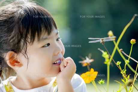 公園でトンボを見つめる女の子 FYI01076035