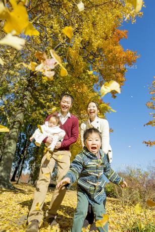 紅葉の公園で遊ぶ人家族 FYI01076083