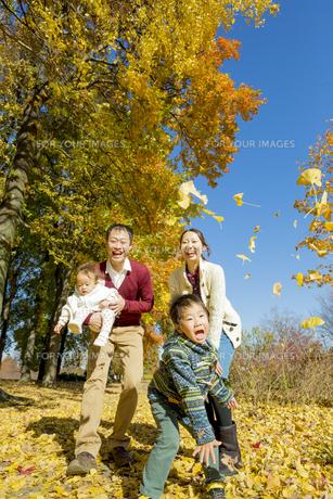 紅葉の公園で遊ぶ人家族 FYI01076093