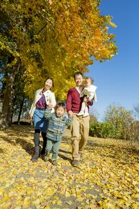 紅葉の公園を手をつないで歩く4人家族 FYI01076158
