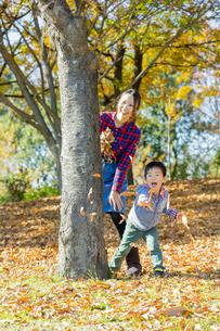 紅葉の公園で遊ぶ母親と息子 FYI01076263