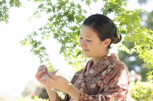 新緑のもみじをバックに折り鶴を見つめる着物姿の女性 FYI01076769