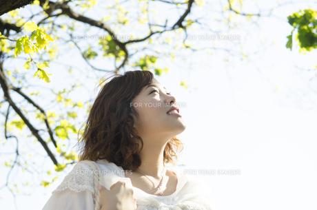 緑をバックに空を見上げる女性 FYI01076844