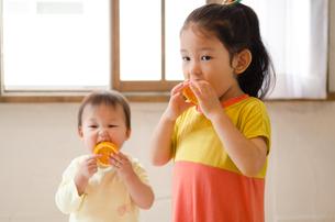 オレンジを食べている姉妹 FYI01077540
