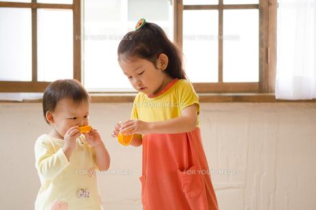 オレンジを食べている姉妹 FYI01077548