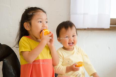 オレンジを食べている姉妹 FYI01077607