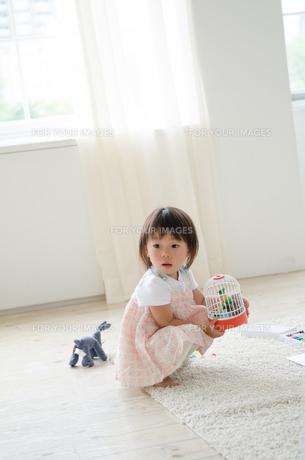 部屋の中で遊んでいる女の子 FYI01077614