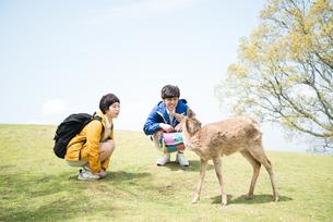 鹿を見ている男女 FYI01078546