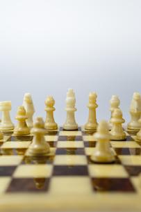 凛と立つチェスの駒 FYI01079367
