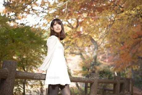 秋の紅葉した公園で立っている女性 FYI01096528