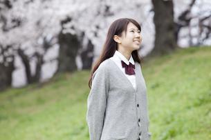 桜と女子高生 FYI01096765