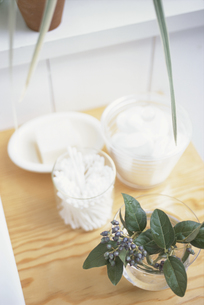 綿棒と石鹸と植物 FYI01120341