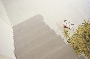 階段と植物 FYI01121763