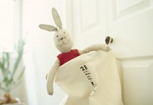 袋に入ったウサギの人形 FYI01122339