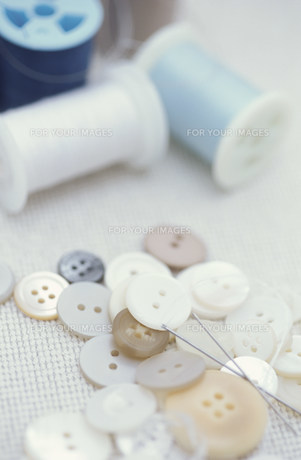 ボタンとミシン糸 FYI01122468