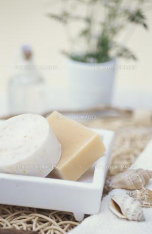 石鹸2種類と貝殻 FYI01122694
