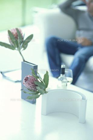 花瓶に活けた花(プロテア)とソファで寛ぐ男性 FYI01122806