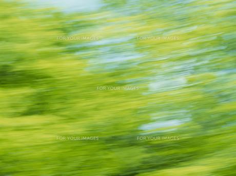 流れる新緑 FYI01144190
