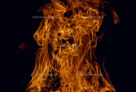 炎 FYI01146215