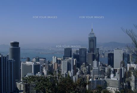 香港のビル街 FYI01146316