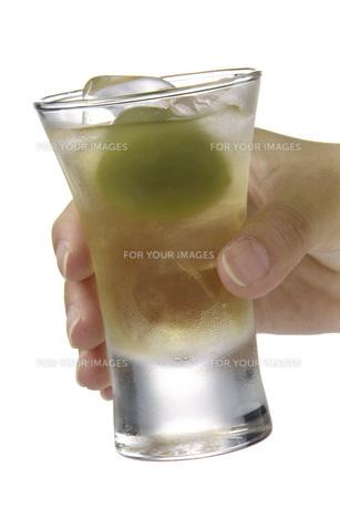 梅酒を持つ手の素材 [FYI01148472]