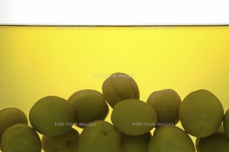 熟成した梅酒と梅 FYI01148482