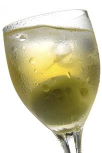 梅酒 FYI01148540