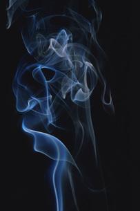 煙 FYI01158111
