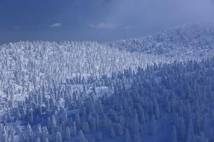八甲田の樹氷 FYI01165389