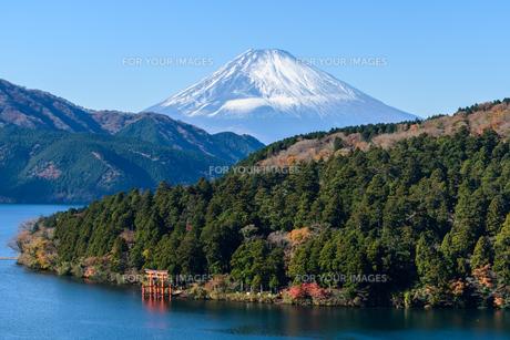 箱根から見た富士山 FYI01165546