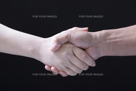 握手をする男女の手 FYI01168084