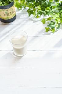 テラスでミルク FYI01168272