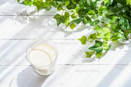 テラスでミルク FYI01168274