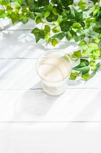 テラスでミルク FYI01168276