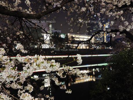 東京 神楽坂 春の夜景 FYI01176251