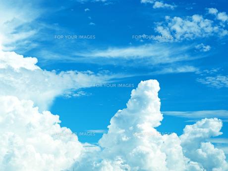 綺麗な青空と入道雲-8月の兵庫県宝塚市- FYI01205425