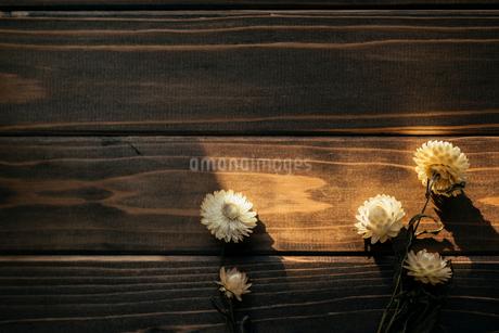 木目のテーブルの上に置かれたドライフラワーの写真素材 [FYI01216443]
