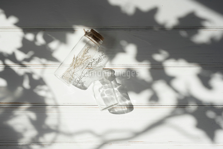 ドライフラワーが入ったガラス瓶と木漏れ日 FYI01216595