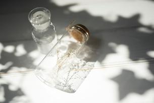 ドライフラワーが入ったガラス瓶と小瓶 FYI01216597