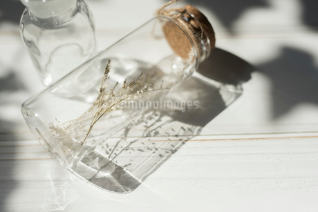 ドライフラワーが入ったガラス瓶 FYI01216598