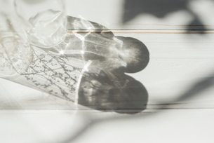 ガラス瓶の影と反射した光 FYI01216599