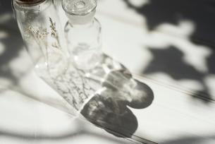 木漏れ日とガラス瓶 FYI01216600